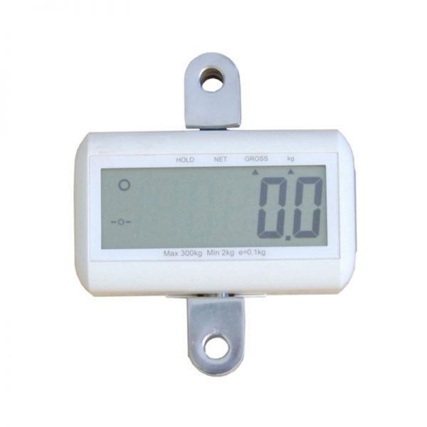 carina 350 floor lift scale handicare