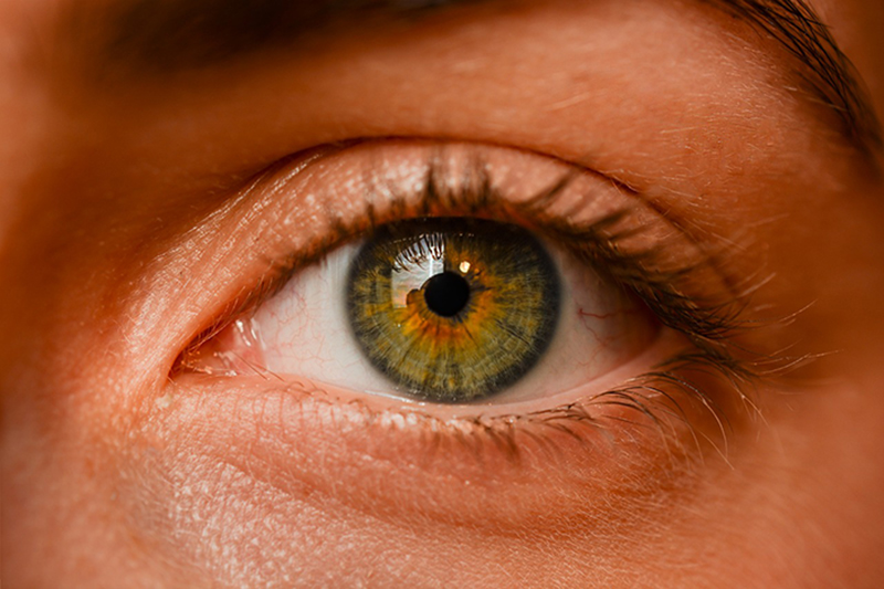 color vision fades with age